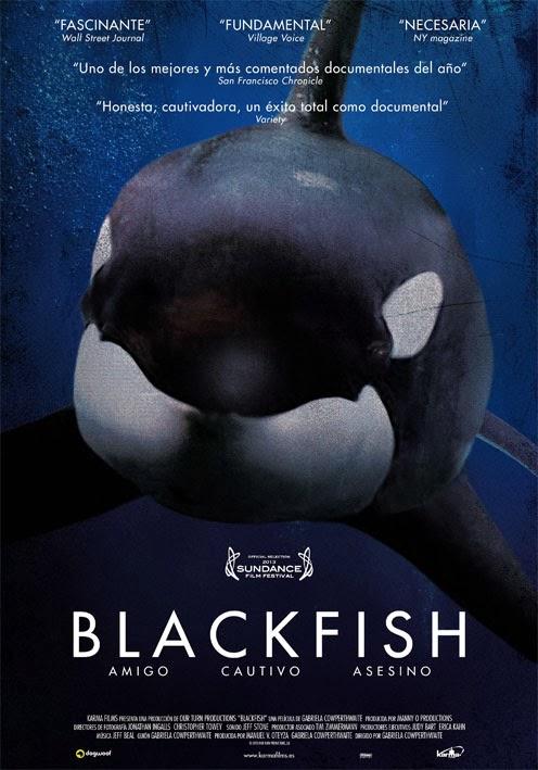 """Foto Reprodução      Cartaz do documentário """"Blackfish - Fúria Animal"""" ; veja trailler do filme"""